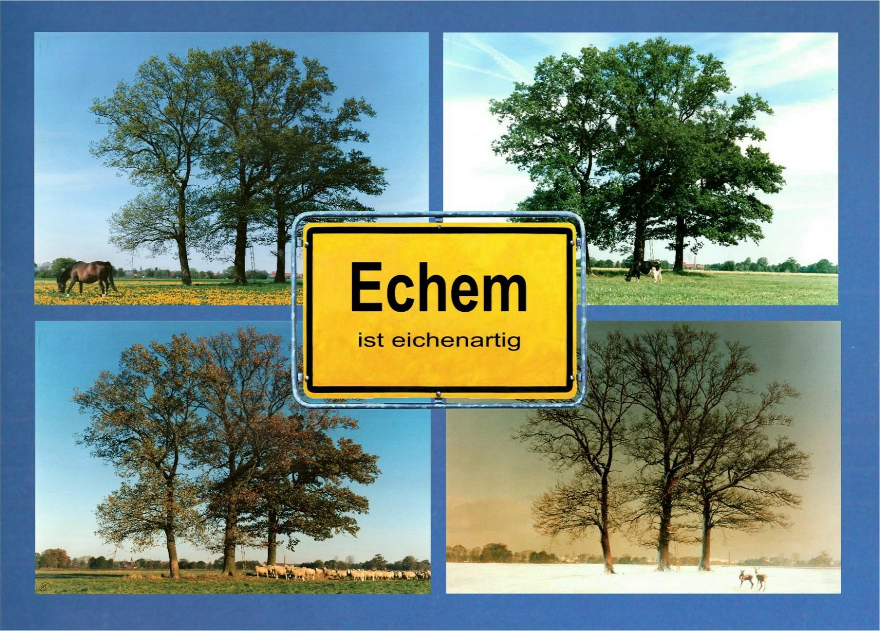 3-eichen-in-4-jahreszt