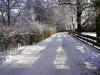 user_66_uhlenbuch_januar_2003