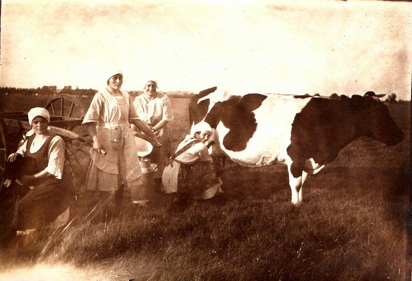 melken-1920