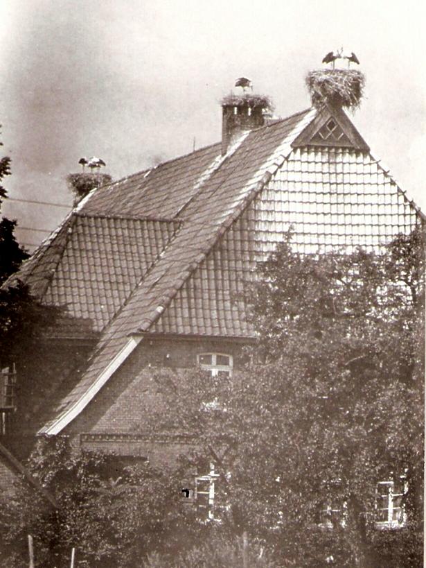 storchenhaus-um-1975