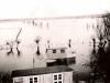 hochwasser-1956-an-der-laak