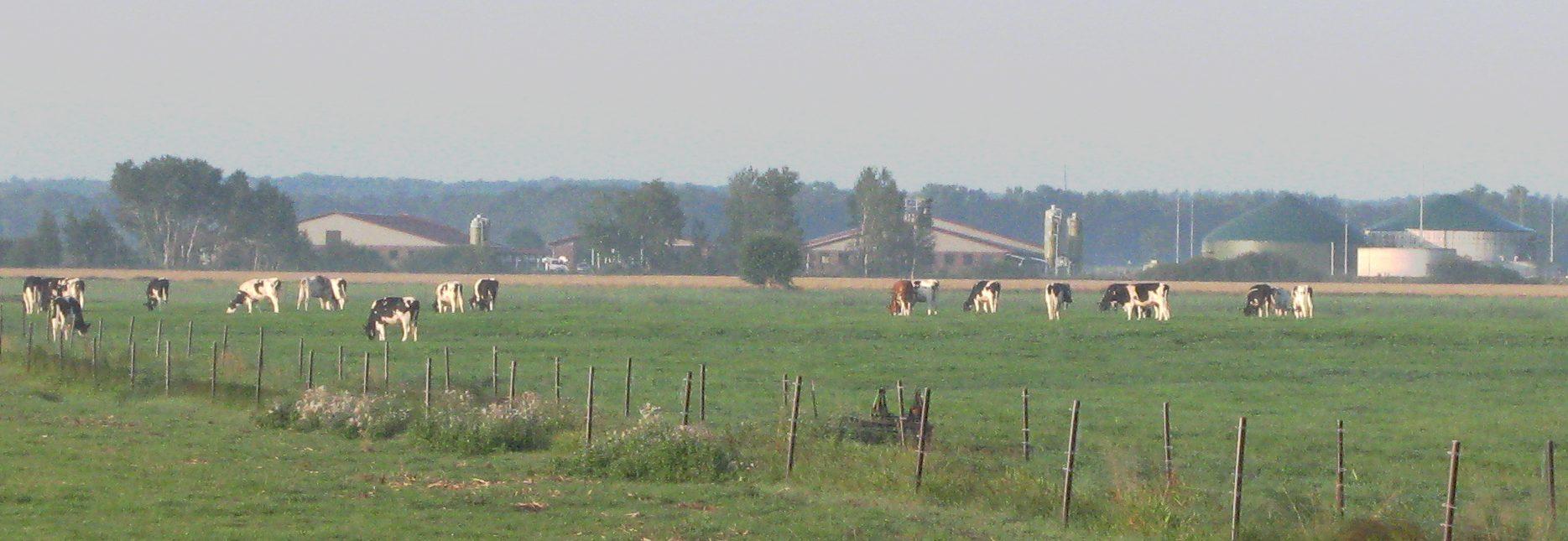 Gemeinde Echem
