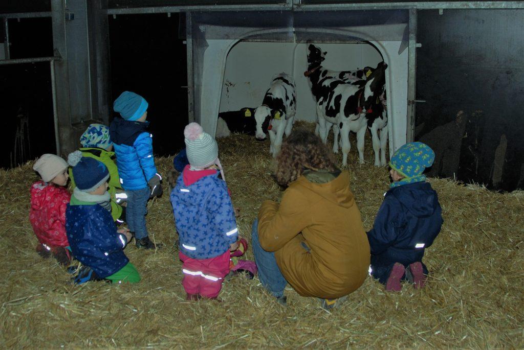Weihnachten im Stall @ LBZ Echem